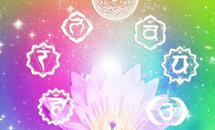 Bienvenue sur le chemin du bien etre